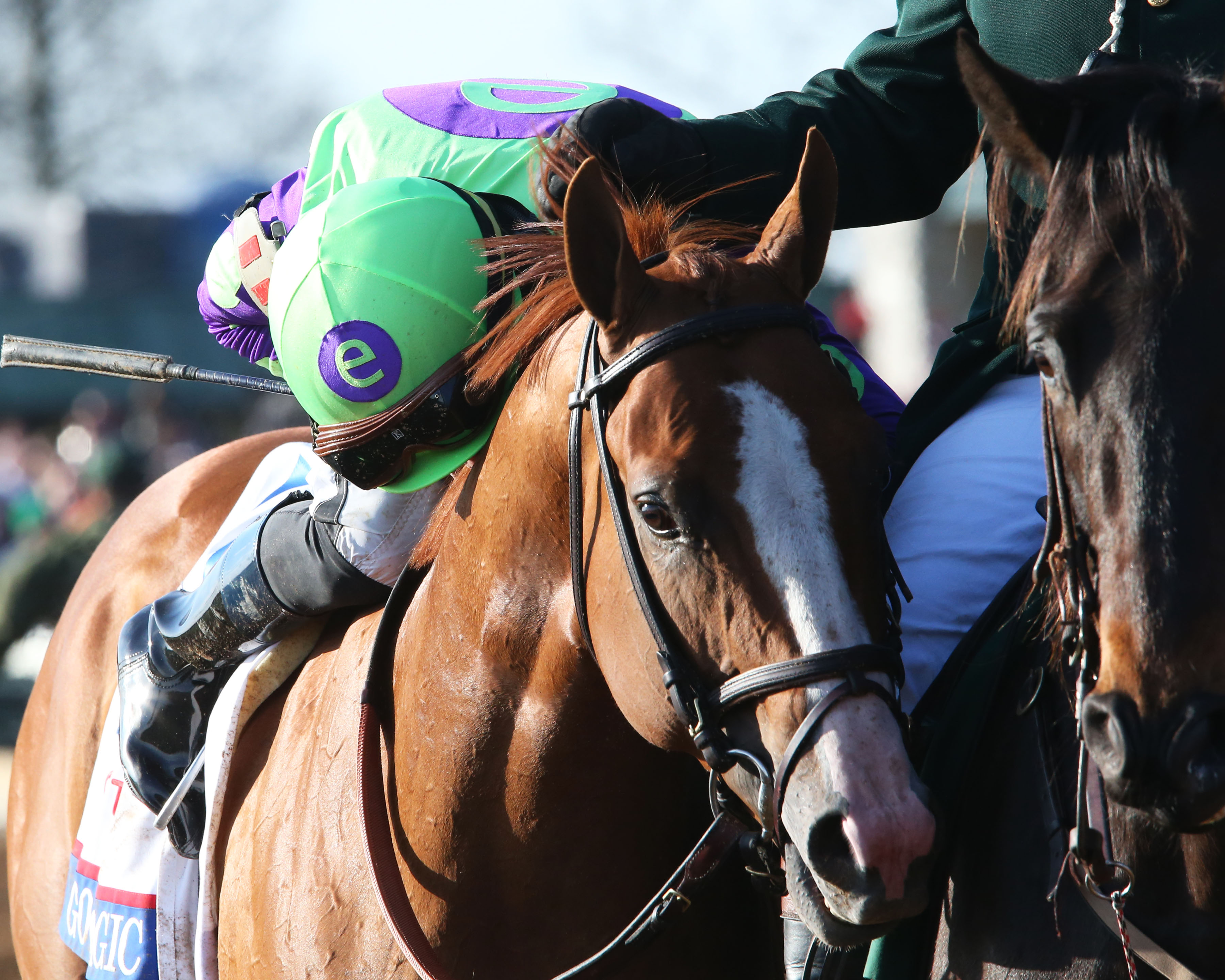 Favored Good Magic Cruises To Toyota Blue Grass Victory Keeneland