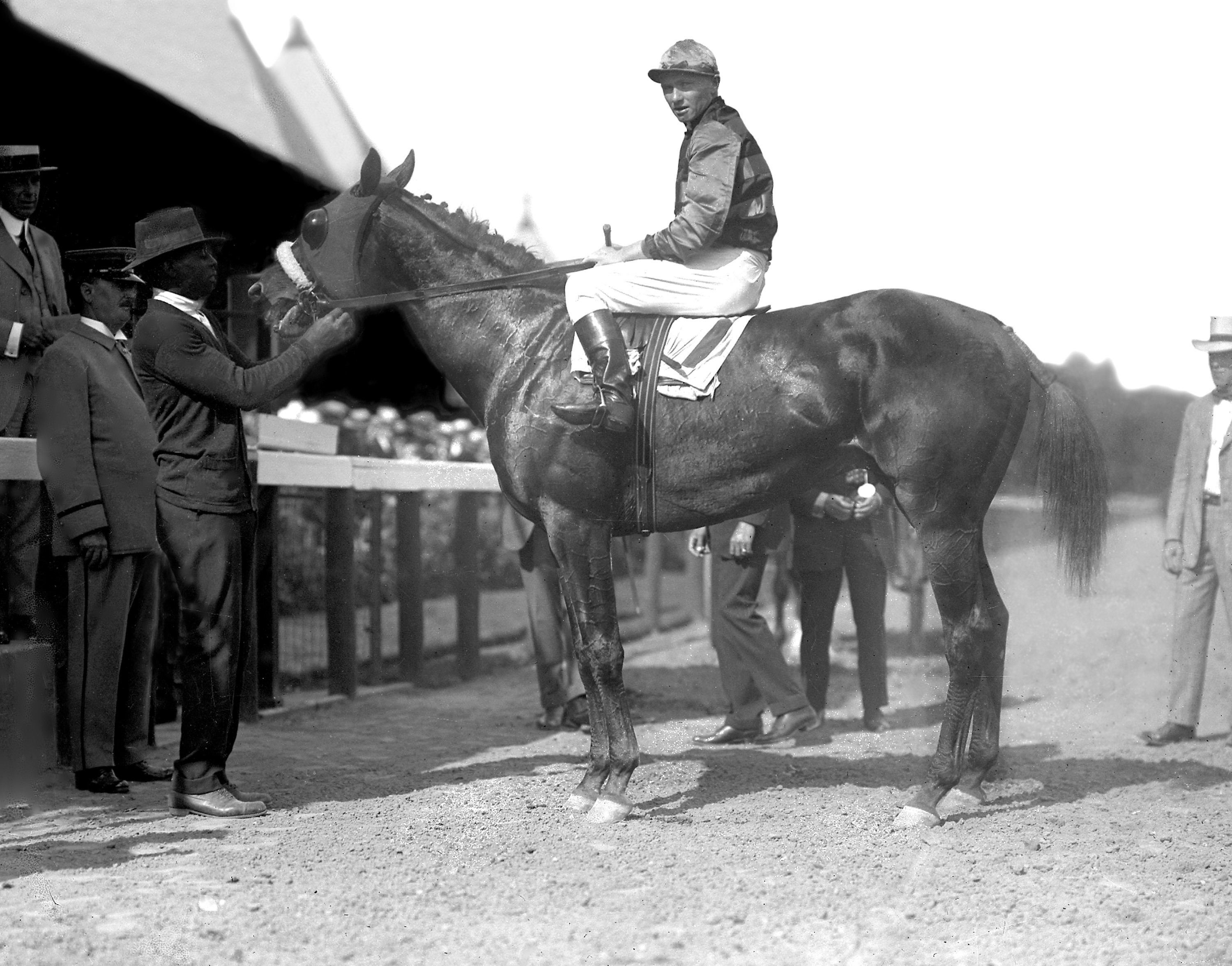 Keeneland Library Cook Collection - 3422 - Earl Sande on Sir Barton, undated