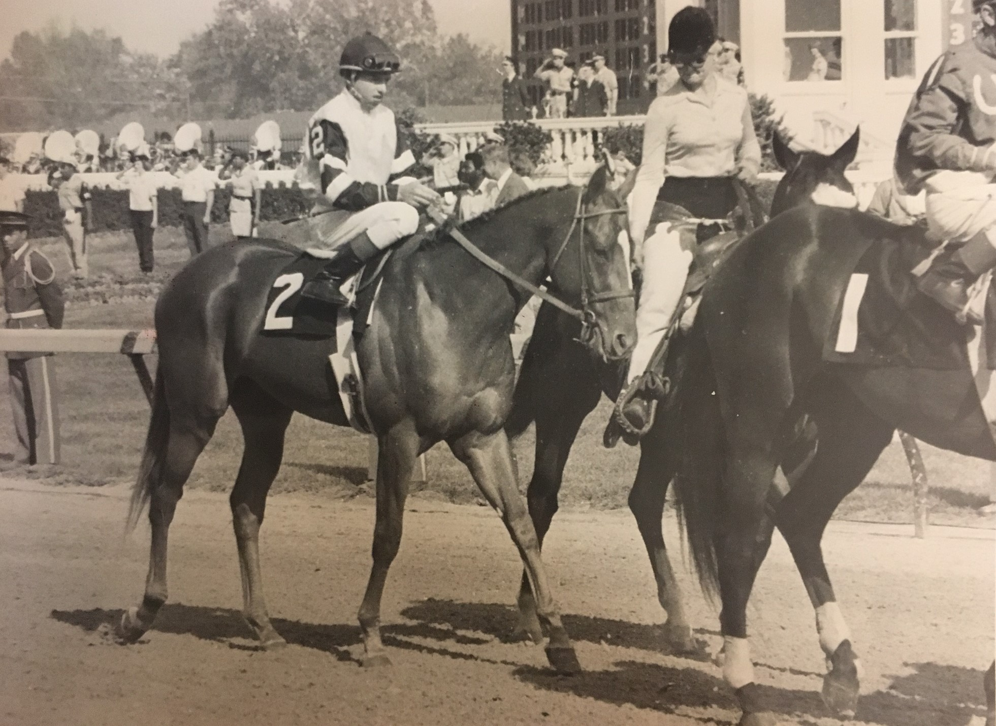 Affirmed in 1978 Kentucky Derby post parade