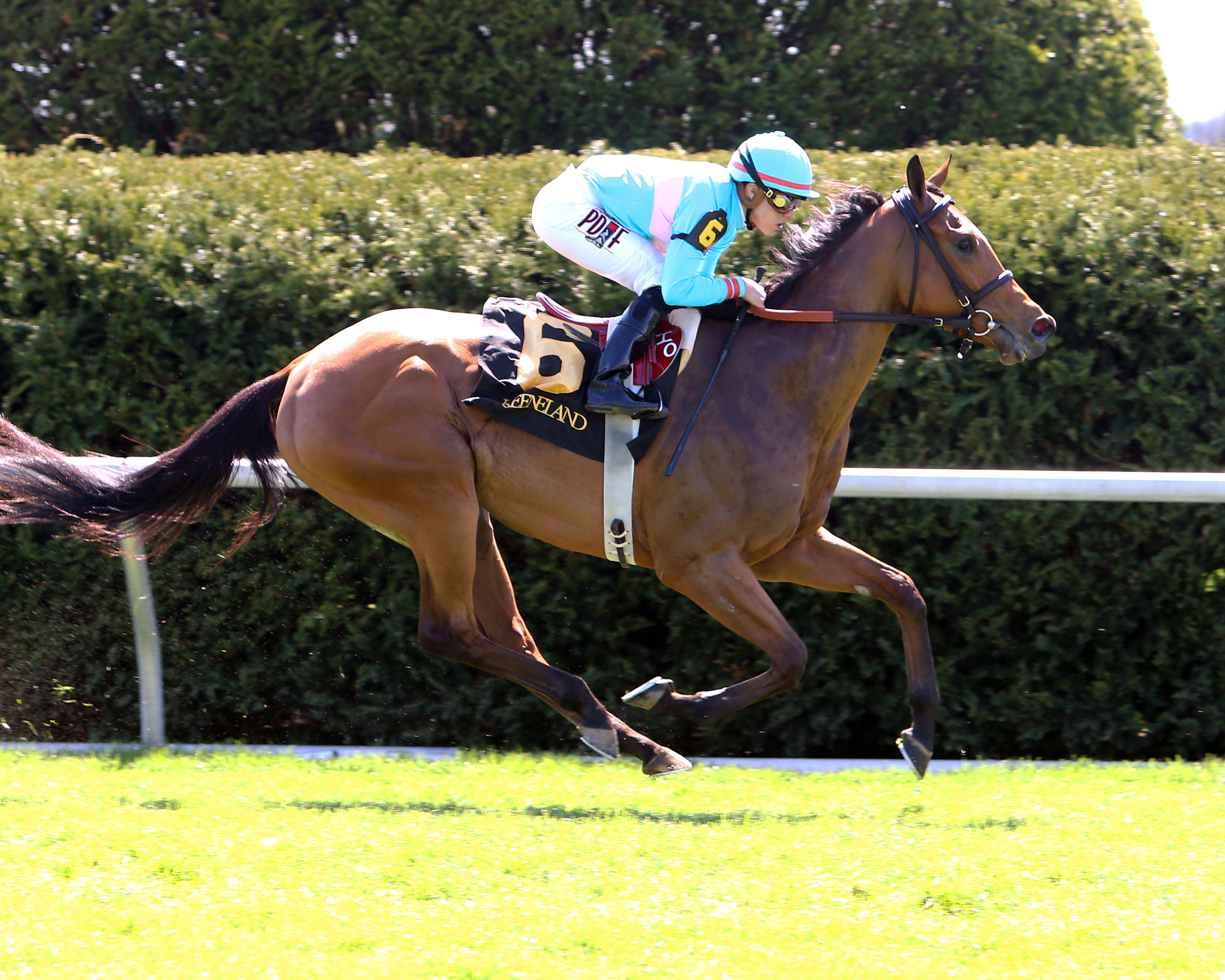 Keeneland Sales Graduates Dominate Belmont's Stars and Stripes Racing Festival
