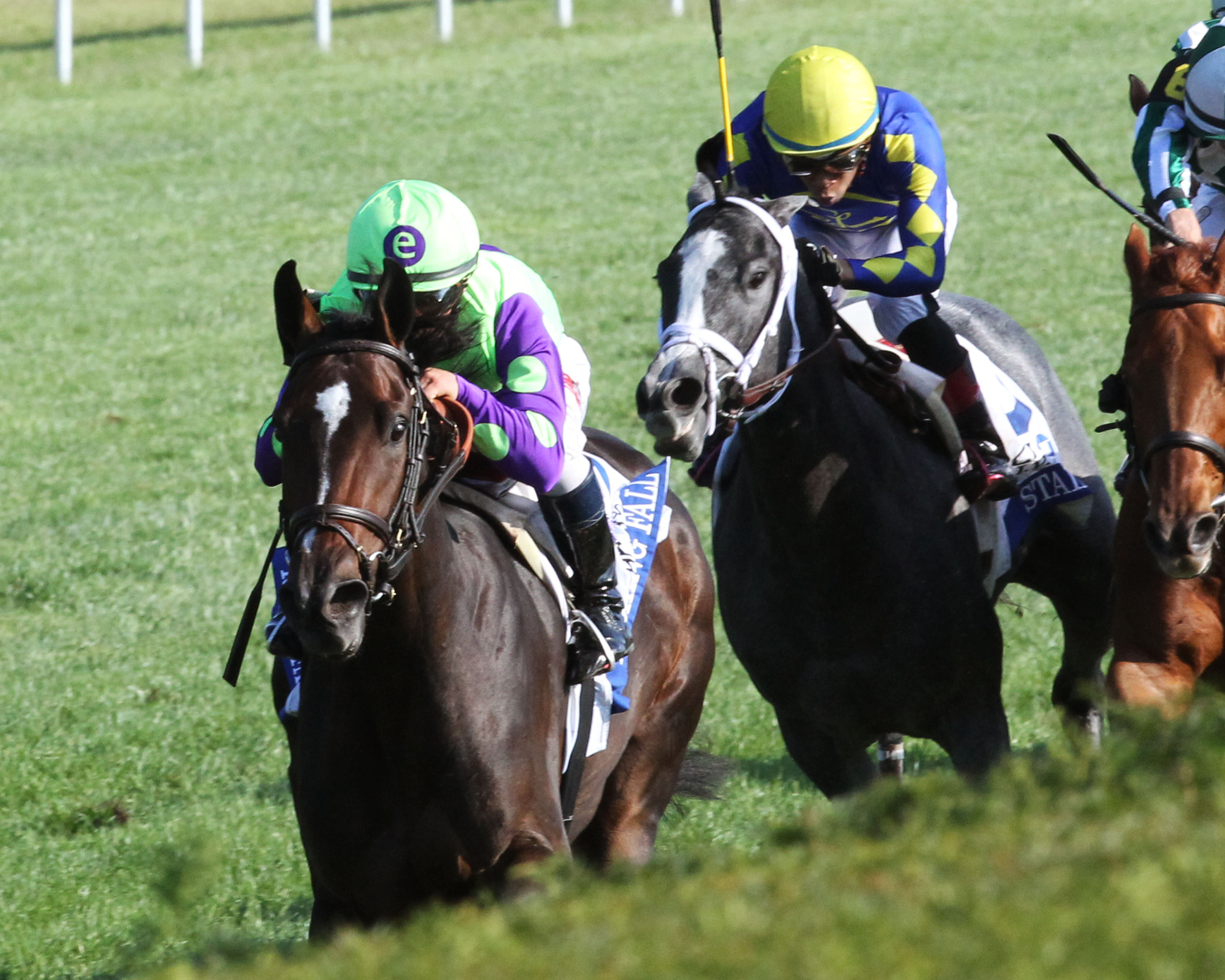 Breeders Cup Winners Caledonia Road And Rushing Fall
