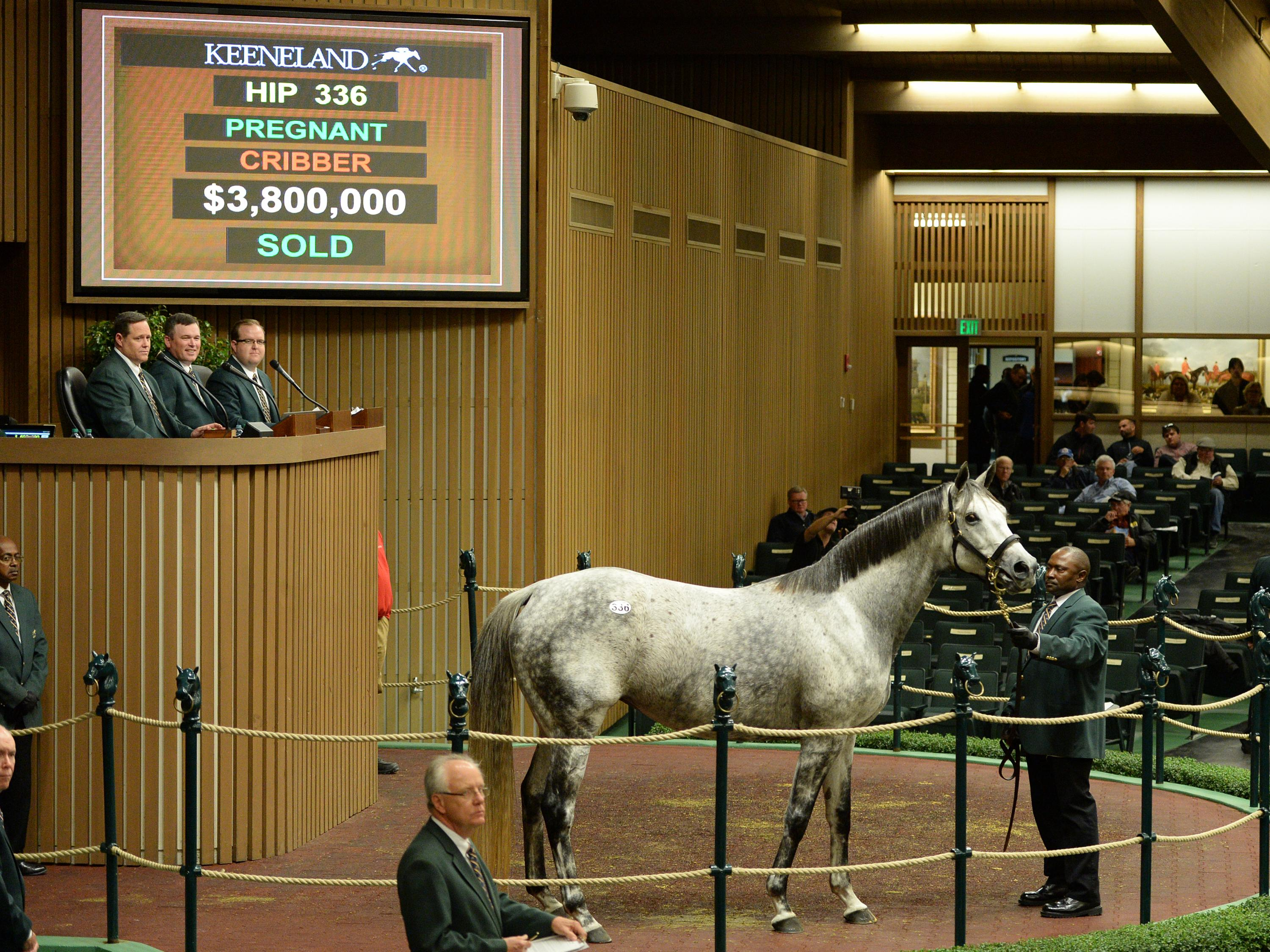 Unrivaled Belle selling at Keeneland