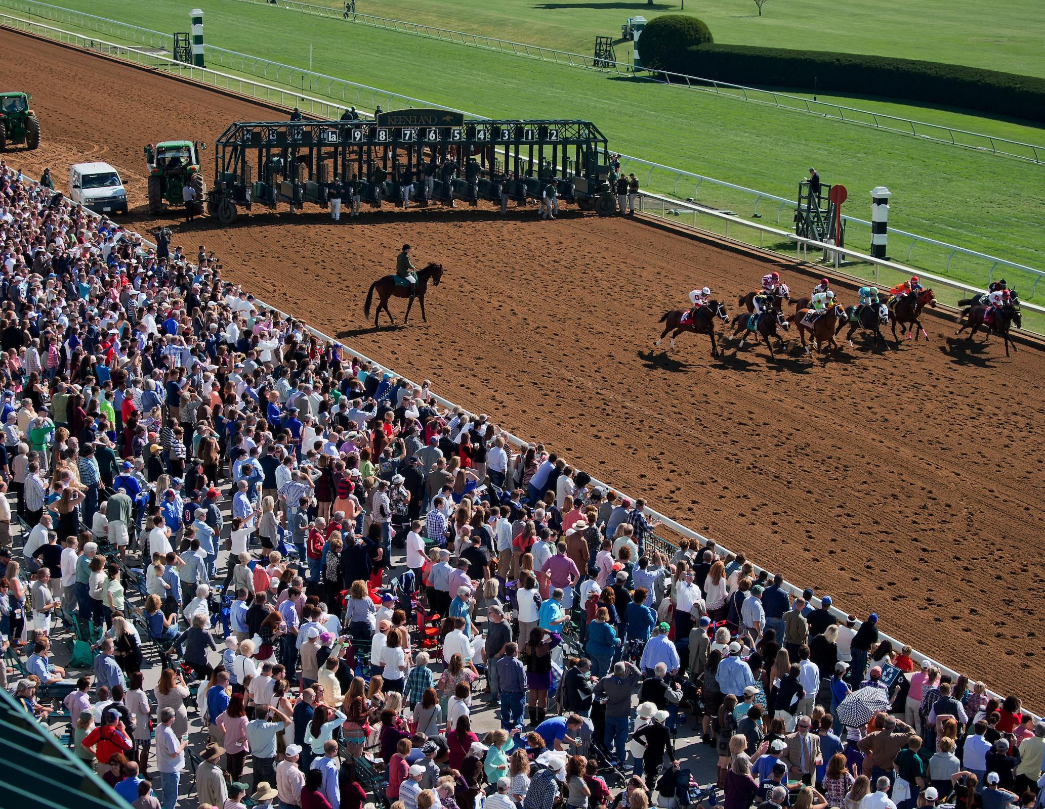 Keeneland on the rail