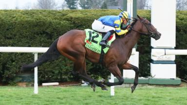 Analyze It winning the Kentucky Utilities Transylvania (G3)