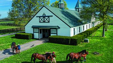Crestwood Farm