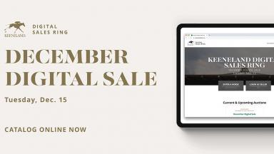 Dec. digital sale