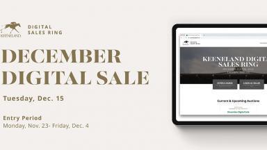 December Dig. Sale