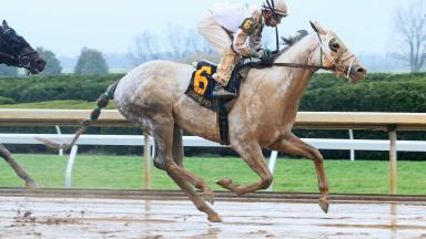 Heartwood wins at Keeneland