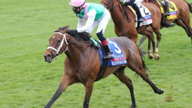 Coolmore Jenny Wiley (G1)