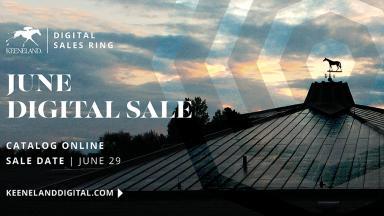 June Digital Sale