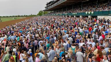 Spring racing and crowd