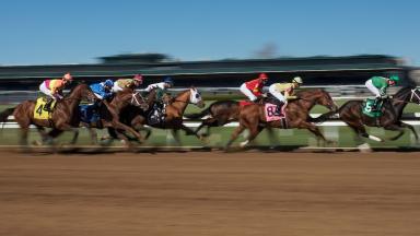 Spring racing image