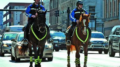 Lexington Mounted Police