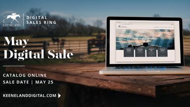 May Digital Sale
