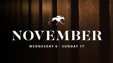 November Sale dates
