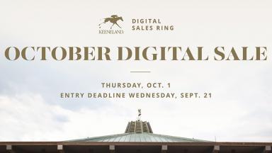 October Digital Sale