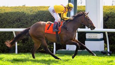 Lady Aurelia Giant's Causeway win