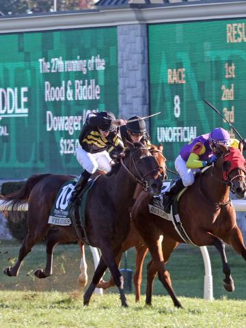 125 000 Rood Amp Riddle Dowager G3 Keeneland